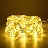 10M 100 LEDS Lichterschlauch, Eruibos LED Schlauch Außen mit Fernbedienung & Timer, IP65 Wasserdicht,8 Modi und Helligkeit dimmbar Lichterkette für Aussen, Weihnachtsbeleuchtung, Deko, Party, Warmweiß