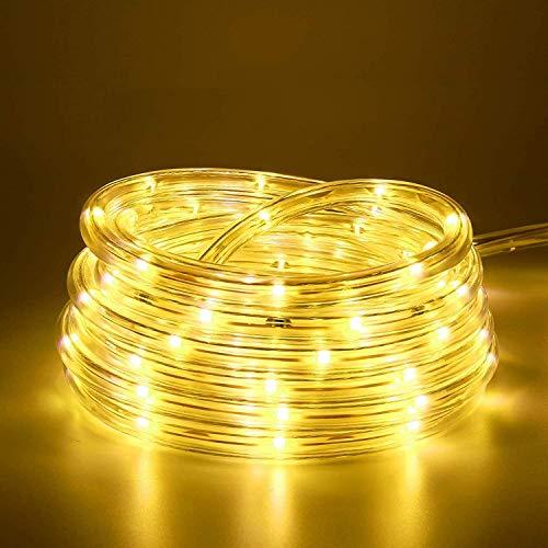 10M 100 LEDS Lichterschlauch, Eruibos LED Schlauch Außen mit Fernbedienung & Timer, IP65 Wasserdicht,8 Modi und Helligkeit dimmbar Lichterkette für Aussen, Weihnachtsbeleuchtung, Deko, Party