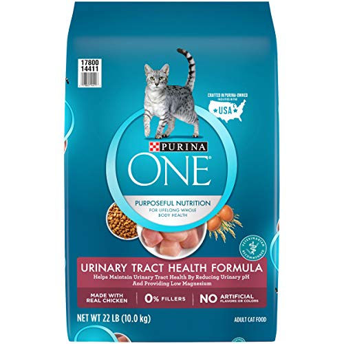 Purina ONE High Protein Dry Cat Food, Urinary Tract Health Formula - 22 lb. Bag