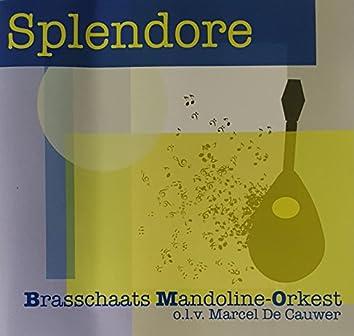 BMO 005 Splendore Brasschaats Mandoline Orkest olv Marcel De Cauwer