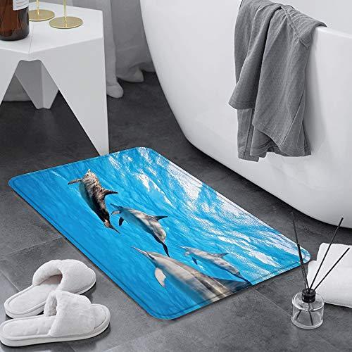 Badematte 60x100 cm rutschfest,Delphin, Unterwasserfotografie von Delf,Badvorleger Maschinenwaschbar Anti-Rutsch Badteppich Weich Wasserabsorbierende-Badematten Flauschige Mikrofaser Badezimmerteppich