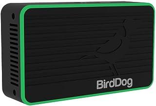 BirdDog Flex 4K Out Full NDI Decoder