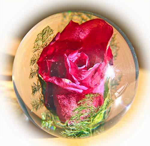 Briefbeschwerer Rose