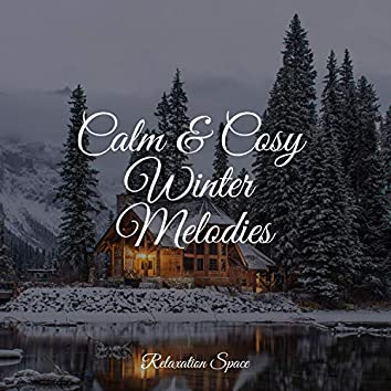 Calm & Cosy Winter Melodies