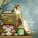 Fairy Girl Angel and Animal Poster Canvas Art Painting Mural Kindergarten Pintura decorativa 50x70 cm