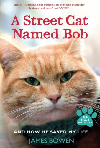 Animal Care & Pet Essays