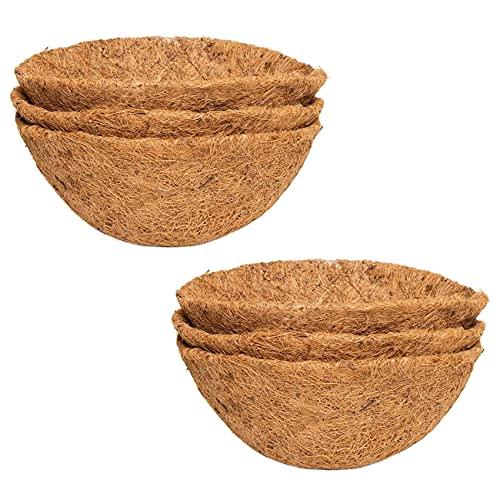 Liseng 6 unidades de 25,4 cm, semicircular, fibra de coco de repuesto, para macetas, jardines,...