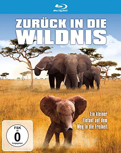 Zurück in die Wildnis - Ein kleiner Elefant auf dem Weg in die Freiheit [Blu-ray]