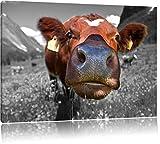 ausgewachsene Kuh auf Bergwiese schwarz/weiß Format: 80x60