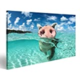 bilderfelix® Bild auf Leinwand Wildes, schwimmendes