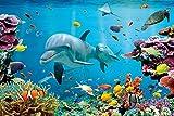 Poster Delfin in Unterwasserwelt in der Karibik - Größe