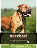 Boerboel: Choose best dog breeds for you (English Edition)