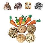 Yicare Lot de 11 Jouets pour Petits Animaux à mâcher, Lapin, Hamster, Jouet pour Lapin Nain, Jouet Lapin Nain, Jouet Hamster