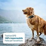 Recensione 2 Tractive Localizzatore GPS per Cani