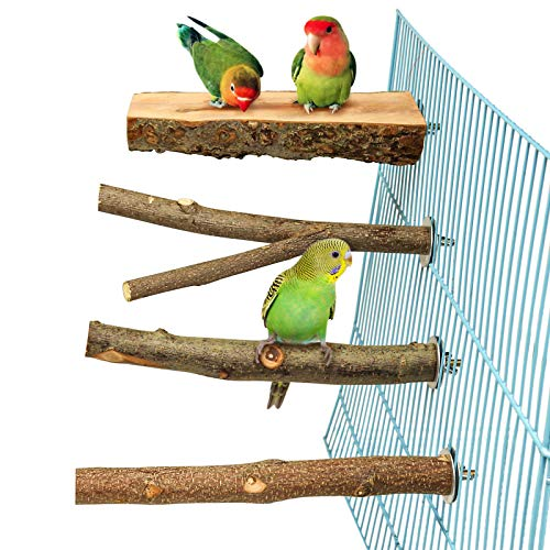 4 Pack Natural Wood Bird Perch for Bird Cages,Parrot Stand Perch Platform Exercise Playground Toys Paw Grinding Stick Perch Stand Cage Accessories for Budgies Cockatiel Conure Parakeet Lovebirds (H01)