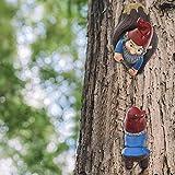 Kletternder Gartenzwerg Skulptur Zwerg Outdoor Garten Dekor, Lustige Gnom Hof Kunst Harz Figur Dekorationen für den Baum,Innen oder Außen - 2 * Zwerge (15,5cm &17 cm)