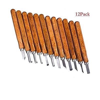 THSINDE 12 Set SK5 Carbon Steel Wood Carving Chisel Set-Professional Wood Carving Tools