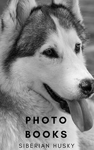 PHOTO BOOKS : SIBERIAN HUSKY DOGS : CUTE SIBERIAN HUSKY DOGS (PHOTO...