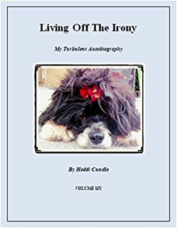Living Off The Irony: My Turbulent Autobiography