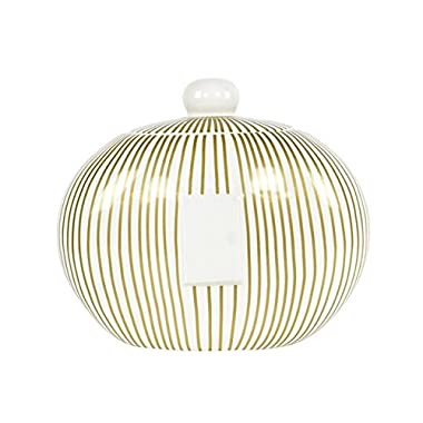 Coton Colors JAR Gold Stripe Happy Everything Big Cookie