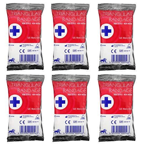 Bleu Lion triangulaire jetables Bandage Bras épaule blessure First Aid Écharpe + 2 épingles à nourrice