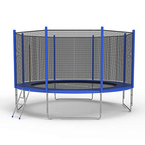 COLOR TREE Trampoline for Kids and Family - 12 FT Recreational Trampoline with Safety Enclosure Net and Ladder and Spring Cover - Outdoor Backyard Bounce Jump Have Fun