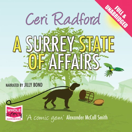 A Surrey State of Affairs cover art
