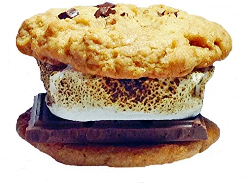Baby g's S'mores Cookie Sandwich Gourmet Gift Basket Hershey's Chocolate Marshmallow Fresh Baked Campfire Kit Gift Box Indiv. Wrapped Desserts for Delivery