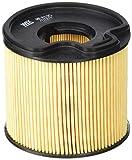 Wix Filter WF8195 - Filtro De Combustible