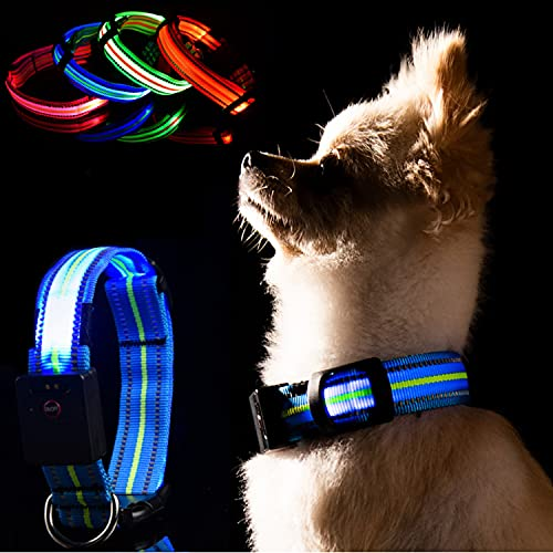 LKJYBG LED Leuchthalsband Hund, USB Wiederaufladbar Wasserdicht ,Sicherheitshalsband für Haustiere Mit Einstellbarer Länge, Geeignet für kleine, große und mittlere Haustiere Blau M