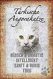 Generisch Cartel de chapa con diseño de gato de Angora turca, 20 x 30 cm