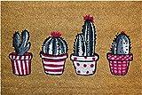 ID Matt Coco Natural Cactus - Felpudo, 40 x 60 x 1,5 cm, Color Beige
