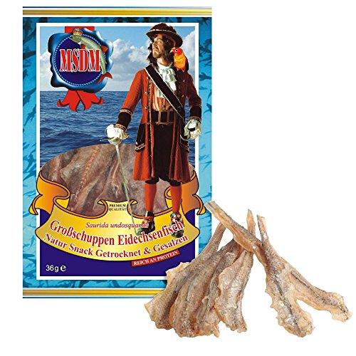 Großschuppen Eidechsenfisch - Original