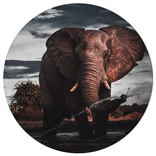 SunnyM Round Area Rugs Large Elephant Retro Soft Indoors/Living Room/Bedroom/Children Playroom/Kitchen Mats Wild Animal Fantastic Landscape Non Slip Rubber Backing Yoga Carpets 4 ft Diameter