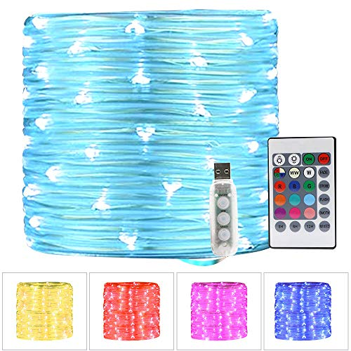 CYLAPEX 100 LED Rope Lights USB Powered 11 Color Changing w. Warm White 33ft, Multi Color Twinkle Tube Rope Fairy Lights Outdoor with Remote for Bedroom Christmas Wedding Party Decoration Waterproof