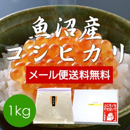 無洗米 魚沼産コシヒカリ 1kg(メール便)