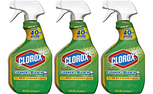 Clorox Clean-Up Bleach Cleaner Spra…
