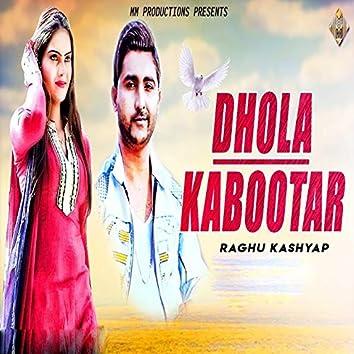 Dhola Kabootar