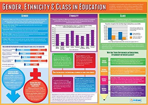 Sesso, etnia e classe in istruzione | Poster di sociologia | Carta lucida laminata misura 850 mm x 594 mm (A1) | Poster di classe di sociologia | Schede educative by Daydream Education