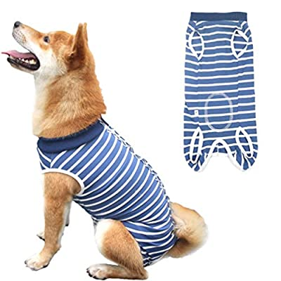Due Felice Dog Professional Surgical Recovery Suit for Abdominal Wounds Skin Diseases, After Surgery Wear, E-Collar Alternative for Dogs, Home Indoor Pets Clothing Blue & White Stripes L