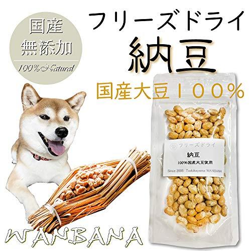 犬・猫用おやつ 納豆 40g 国産大豆100%使用 無添加フードのトッピングやおやつ フリーズドライ 帝塚山WANBANA 6480円以上