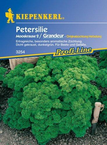 Petersilie Mooskrause 2 / Grandeur
