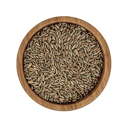 ecoterra Bio Roggen | naturbelassen | Vorratspackung | 2,5 kg