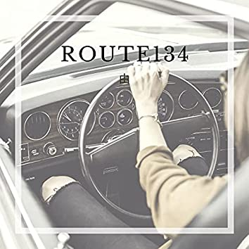 ROUTE134