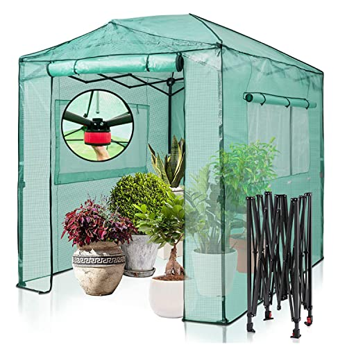 EAGLE PEAK 2.5m x1.8m Portable Walk-in Greenhouse Instant Pop-up Fast Setup Indoor Outdoor Plant Gardening Greenhouse Gazebo, Front and Rear Roll-Up Zipper Entry Doors and 2 Large Roll-Up Side Windows