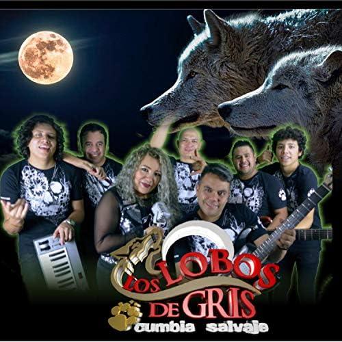 Los Lobos de Gris Cumbia Salvaje