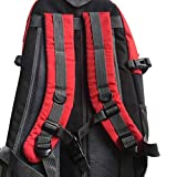 Monrodbitt Mochila Gran capacidad 40L Tejidos impermeables Cubiertas de lluvia Antirrobo Camping Senderismo Equipaje al aire libre Bolsa de deporte (Rojo)