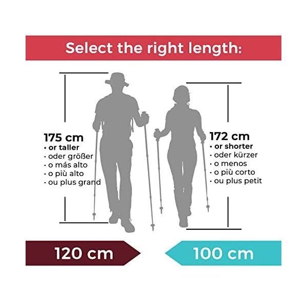 Tri-fold Carbon Cork bastones de trekking/Sticks–plegable, plegable, ajustable, y ultraligero–Ideal para senderismo, senderismo, Backpacking y raquetas 2