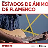 ! ! ! ! ! ! ! ! Estados de Ánimo de Flamenco Brasileño para Restaurantes ! ! ! ! ! ! ! !