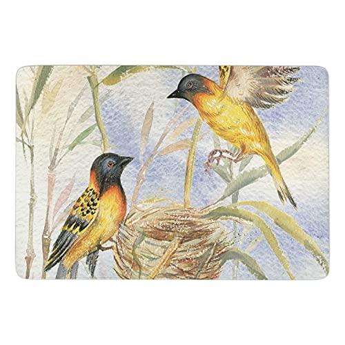 Alfombra de terciopelo coral súper suave para interiores, alfombra de dormitorio, adecuada para decoración del hogar, alfombra de guardería, alfombra para niños, dibujo de dos pájaros
